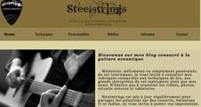 Image du projet : Steelstrings